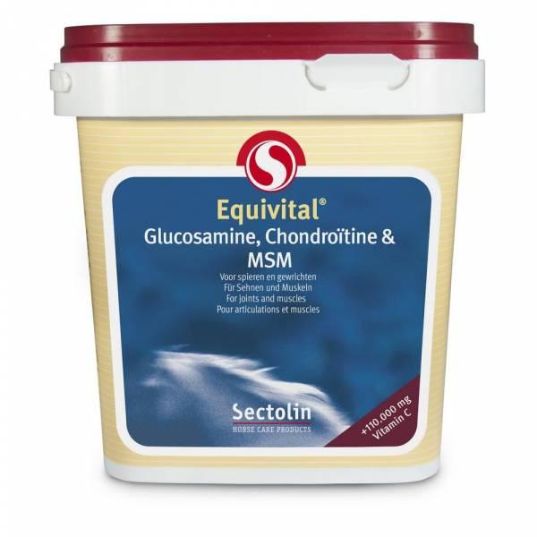 Equivital Glucosamine CChienroïtine MSM (=Souplesse) Sectolin Cheval 1 kg