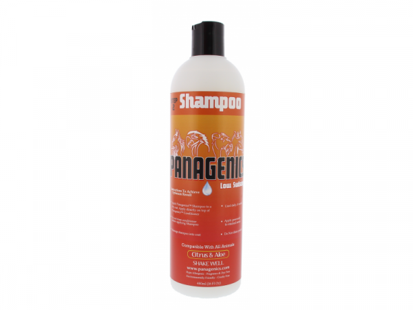 Panagenics Shampooing 480 ml