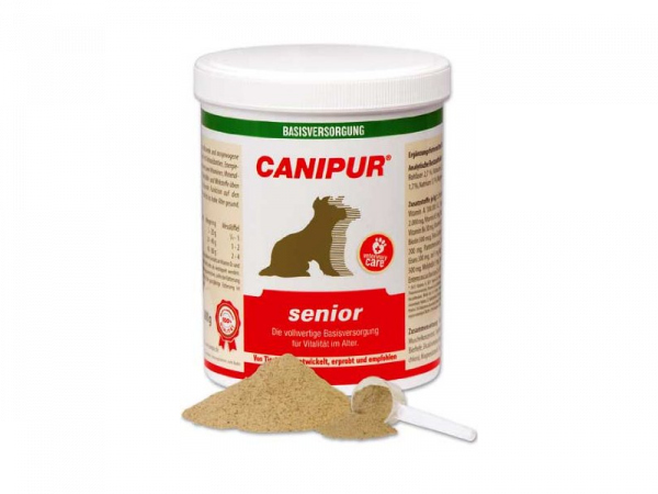 Canipur Senior