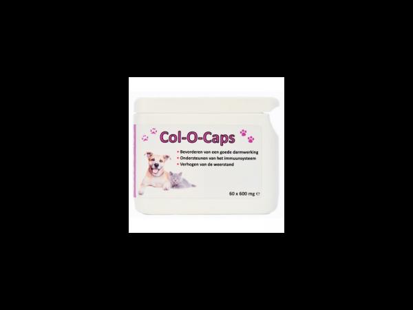 ColOCaps SanoBest 60 x 600 mg capsules