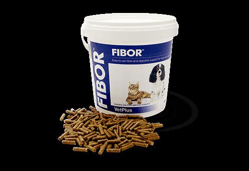 Fibor Digestion Vetplus Chien Chat 500 grammes