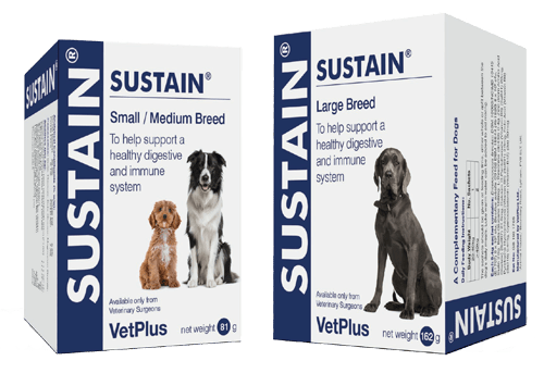 Sustain Probiotiques Chien Vetplus