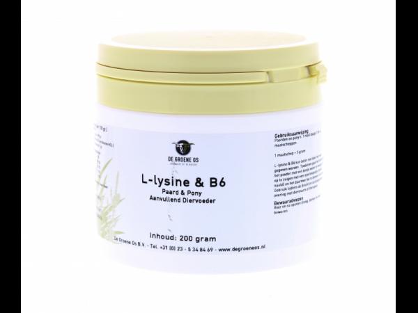L-Lysine & Vitamine B6 Groene Os Cheval pot 200 grammes