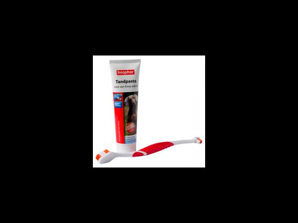 Beaphar Dentifrice et Brosse à dents 1 set