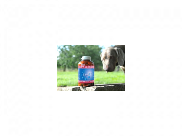 Joint 4S Canine 240 capsules