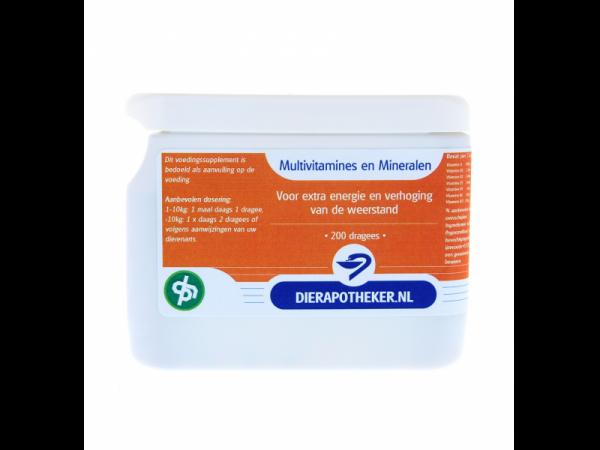 Multivitamines et minéraux Dierapotheker.nl Marque Maison 200 dragées
