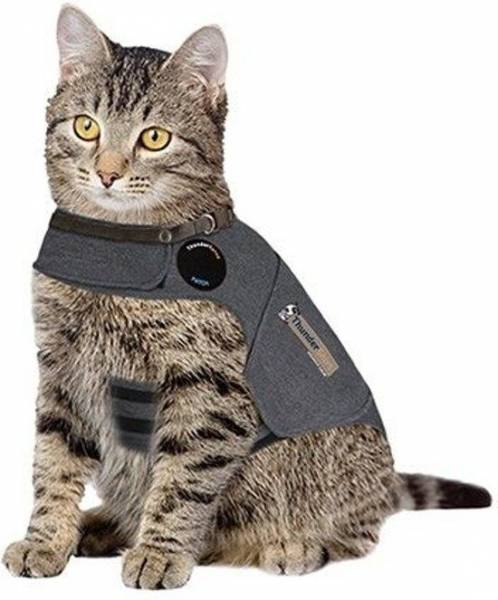 Thundershirt Chat