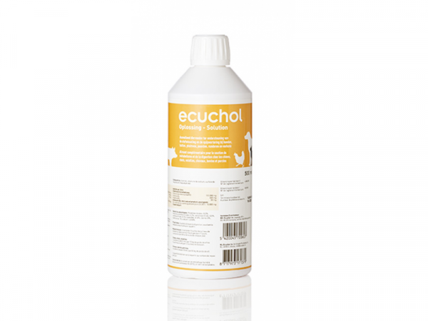 Ecuchol Solution Orale