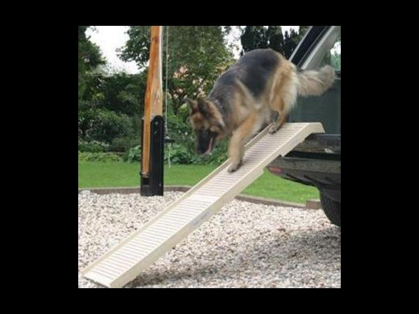 Dogstep Passerelle pour chien pliable