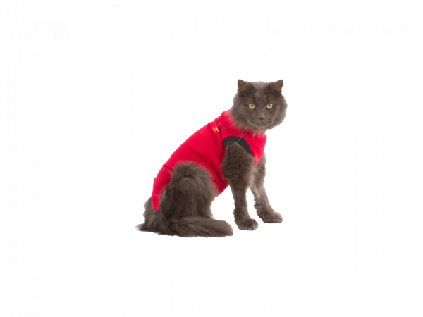 Medical Pet Shirt Chat