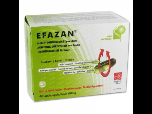 Efazan Oleocapsules Prodivet Peau Chien 45 pièces