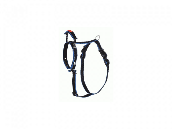 Harness Interated Long Leash Chien