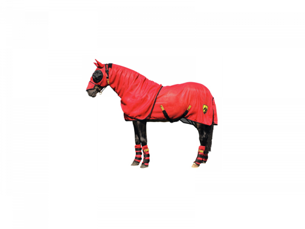 Horse Armor Knockdown Couverture Anti-mouches